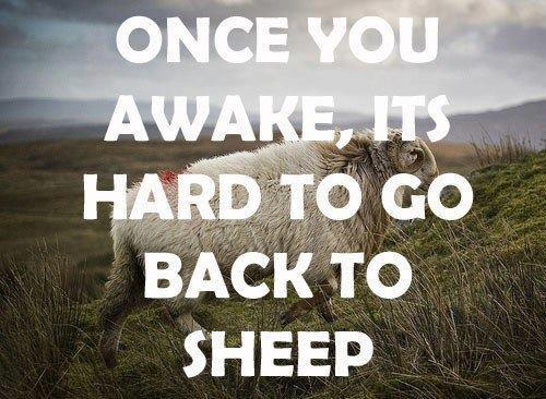 visie-once-you-are-awake-it-is-hard-to-go-back-to-sleep
